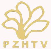 攀枝花电视台三套影视文艺频道logo