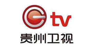 贵州电视台贵州卫视logo