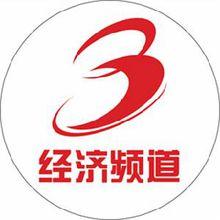 宁夏电视台经济频道logo